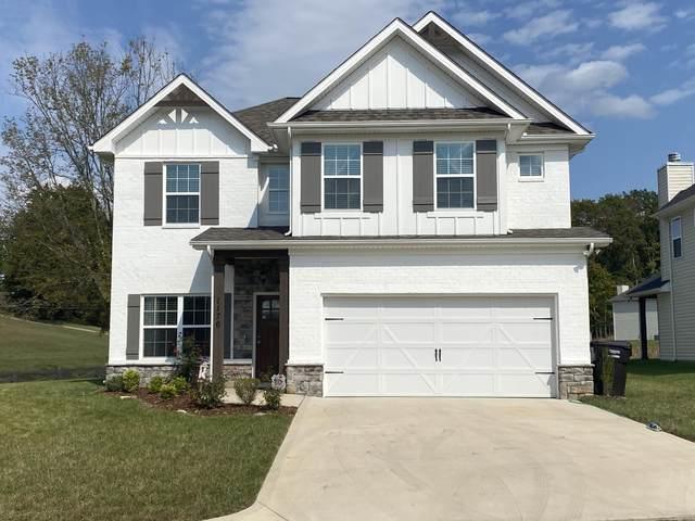 1176 Hamilton Farm Lane, Knoxville, TN 37932 (#1131770) :: Catrina Foster Group