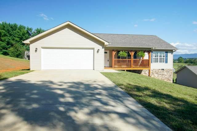 418 Aud Orr Drive, Maryville, TN 37801 (#1131771) :: Catrina Foster Group