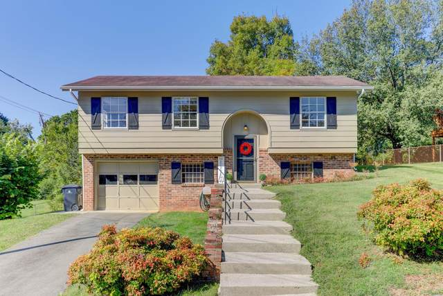 6143 Cougar Drive, Knoxville, TN 37921 (#1131875) :: The Cook Team