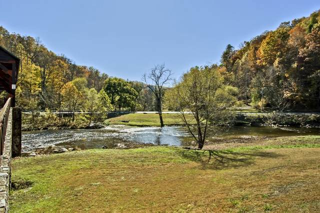 000 Rafter Road, Tellico Plains, TN 37385 (#1131923) :: Tennessee Elite Realty