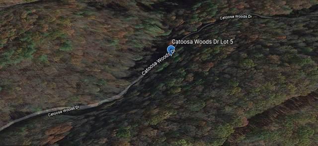 5 Acres Catoosa Woods Dr, Lancing, TN 37770 (#1131929) :: Cindy Kraus Group   Realty Executives Associates