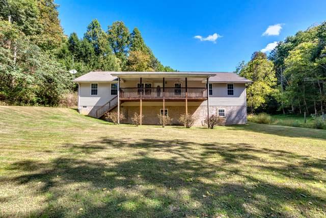 602 Cartertown Rd, Gatlinburg, TN 37738 (#1131964) :: Billy Houston Group