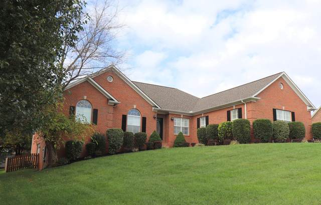 7921 Country Scene Rd, Knoxville, TN 37938 (#1132004) :: Realty Executives