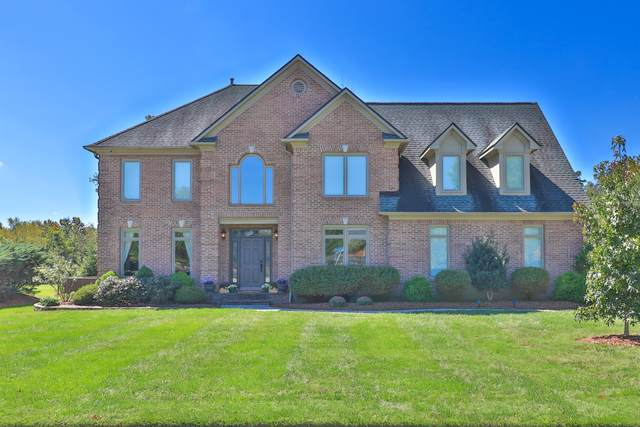 301 Brochardt Blvd, Knoxville, TN 37934 (#1132029) :: Realty Executives Associates