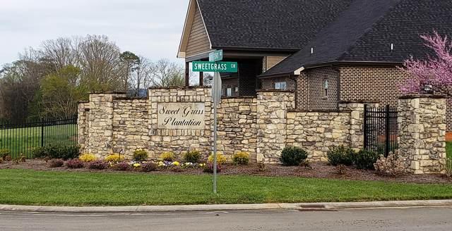 3229 Old Plantation Way, Maryville, TN 37804 (#1132065) :: Catrina Foster Group