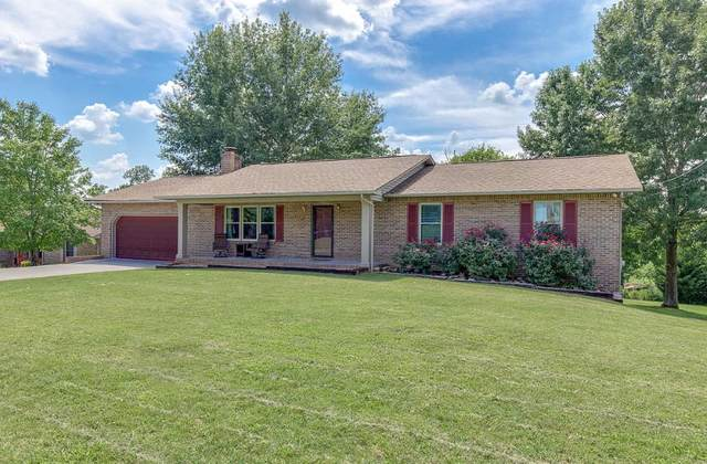 318 Woods View Circle, Kodak, TN 37764 (#1132183) :: Billy Houston Group