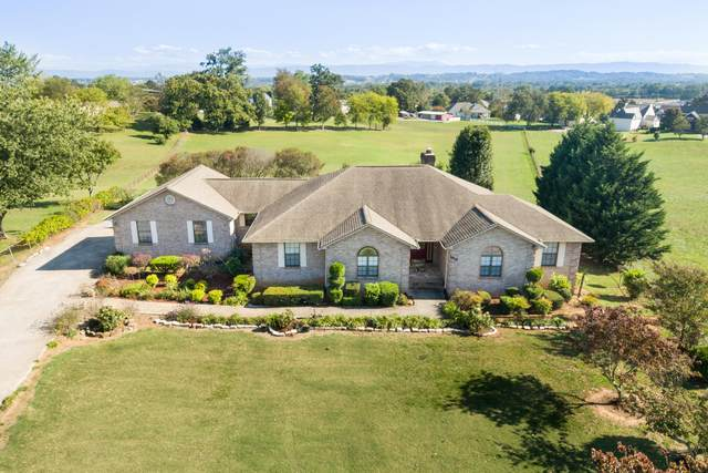1919 Smoky View Circle, Maryville, TN 37801 (#1132214) :: Shannon Foster Boline Group