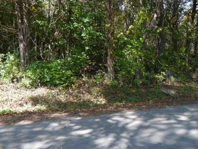 Wilson Hurst St, Tazewell, TN 37879 (#1132238) :: Billy Houston Group