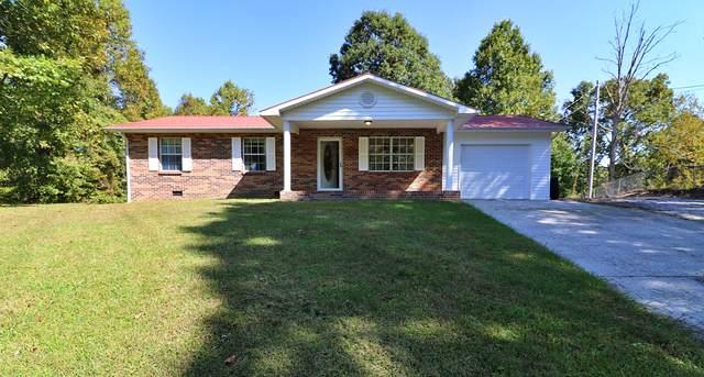 162 Scott Drive, Oneida, TN 37841 (#1132268) :: Catrina Foster Group