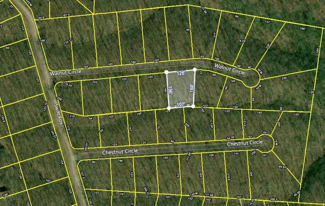 Walnut Circle, Crossville, TN 38555 (#1132323) :: Cindy Kraus Group   Realty Executives Associates
