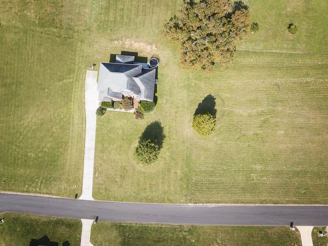 Mississippi Ave, Seymour, TN 37865 (#1132407) :: Billy Houston Group