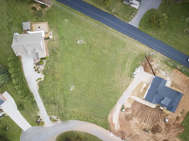 Bryson Court, Sevierville, TN 37876 (#1132422) :: Realty Executives