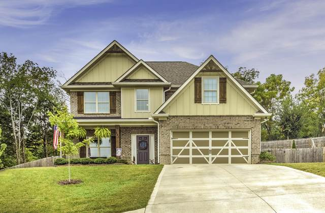 221 Birchwood Lane, Lenoir City, TN 37771 (#1132425) :: Catrina Foster Group