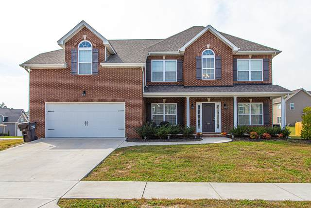 1703 Golden Nugget Lane, Knoxville, TN 37932 (#1132455) :: The Cook Team