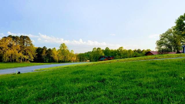 Lot 44 Spring Harbor Drive, Spring City, TN 37381 (#1132457) :: Billy Houston Group