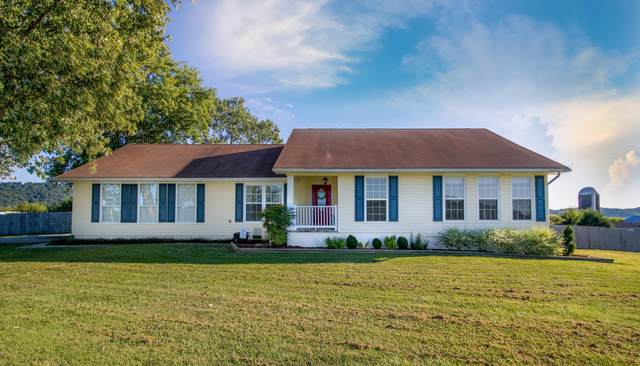 1779 Rocky Valley Rd, New Market, TN 37820 (#1132540) :: Shannon Foster Boline Group