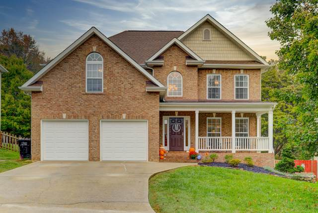 8615 Tobias Lane, Knoxville, TN 37922 (#1132656) :: Shannon Foster Boline Group
