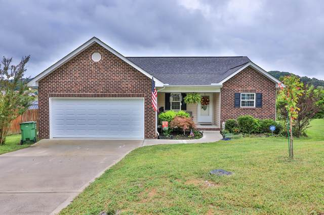 6439 Christian Springs Drive, Corryton, TN 37721 (#1132675) :: Catrina Foster Group