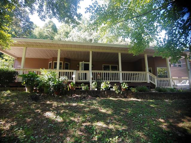 2910 Gobbler Rd, Strawberry Plains, TN 37871 (#1132742) :: Realty Executives