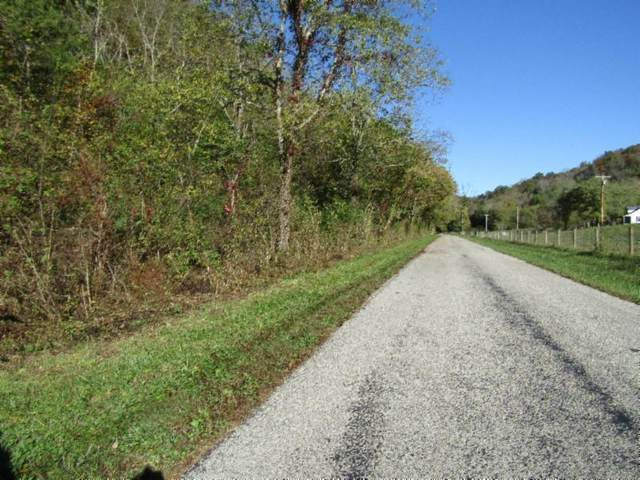 159ac Moss Arcot Road, Celina, TN 38551 (#1132816) :: Shannon Foster Boline Group