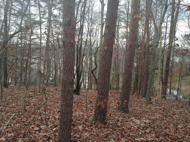 1103 Wilderness Rd, Friendsville, TN 37737 (#1132890) :: Catrina Foster Group