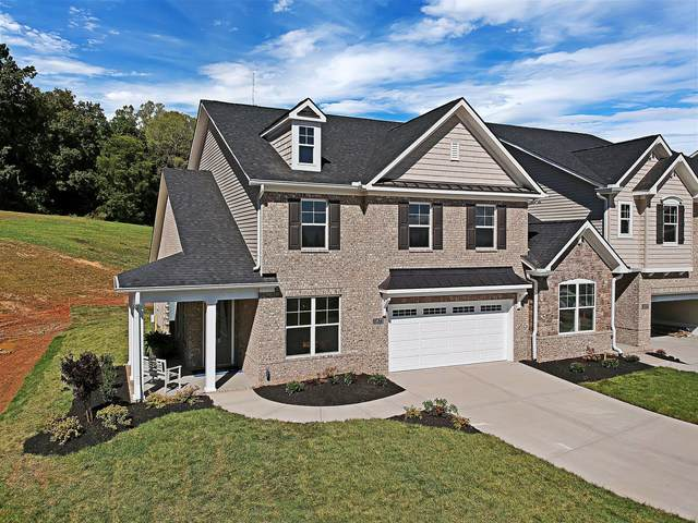 11873 Gecko Drive, Knoxville, TN 37932 (#1132992) :: Billy Houston Group