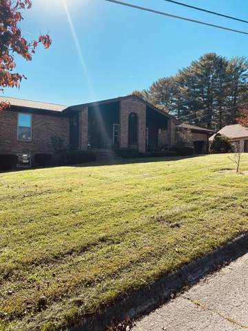 159 Gloria Drive, Tazewell, TN 37879 (#1132995) :: Shannon Foster Boline Group