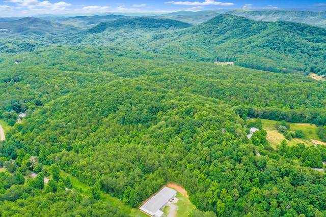 Reliance Road Rd, Tellico Plains, TN 37385 (#1133062) :: Realty Executives Associates Main Street