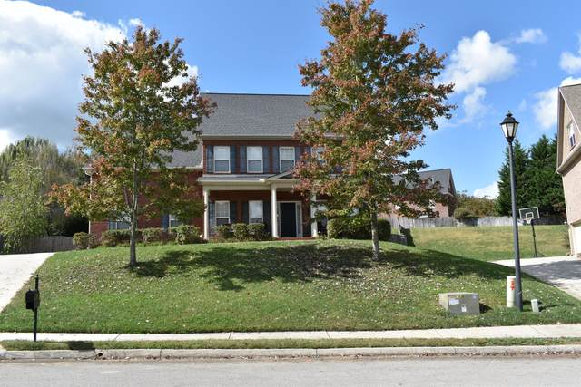 1415 Stone Tower Drive, Knoxville, TN 37922 (#1133129) :: Billy Houston Group