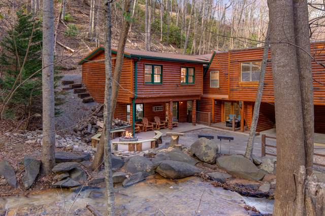 734 Heiden Drive, Gatlinburg, TN 37738 (#1133166) :: Shannon Foster Boline Group