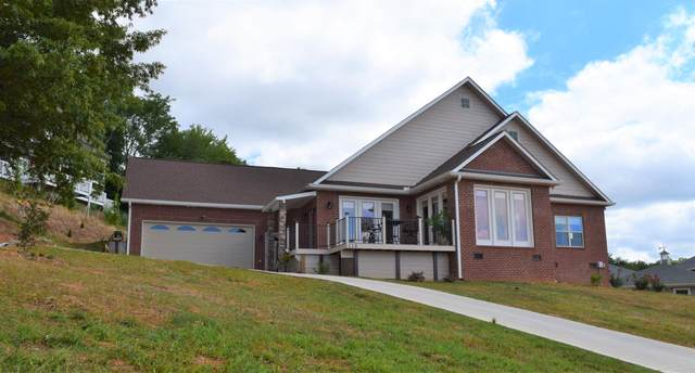 115 Southcove Drive, Greenback, TN 37742 (#1133174) :: Billy Houston Group