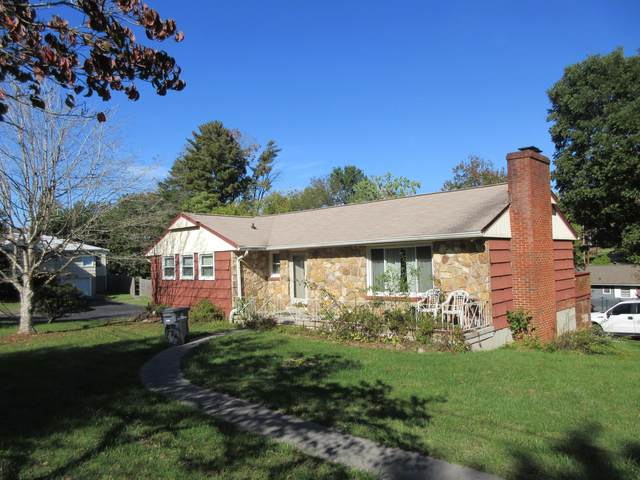 208 Brown Mountain Loop Rd, Knoxville, TN 37920 (#1133188) :: Catrina Foster Group