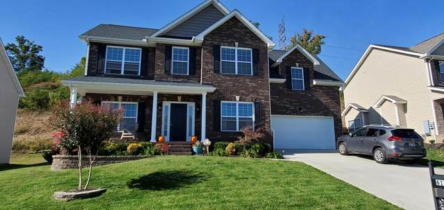 6135 Hollow View Lane, Knoxville, TN 37924 (#1133326) :: Catrina Foster Group