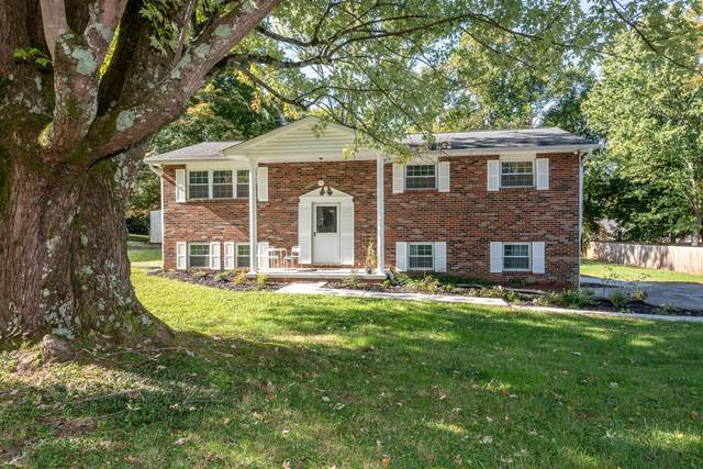 241 Peterson Rd, Knoxville, TN 37934 (#1133327) :: Billy Houston Group