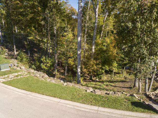 Lot 38 Waterfront Way, Ten Mile, TN 37880 (#1133333) :: Realty Executives Associates