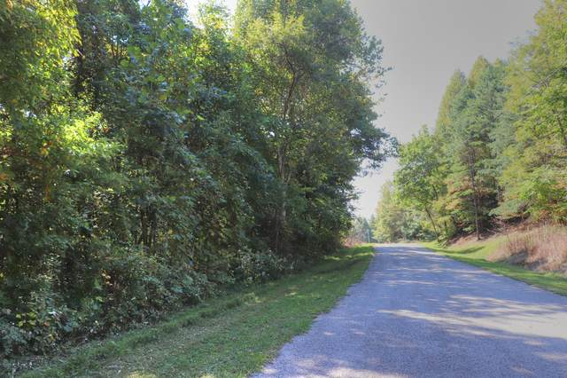 Lot 164 Chimney Rock Rd, New Tazewell, TN 37825 (#1133334) :: Realty Executives Associates