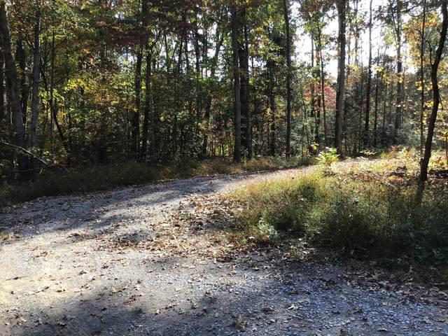 380 Mohawk Drive, Crossville, TN 38572 (#1133423) :: Shannon Foster Boline Group