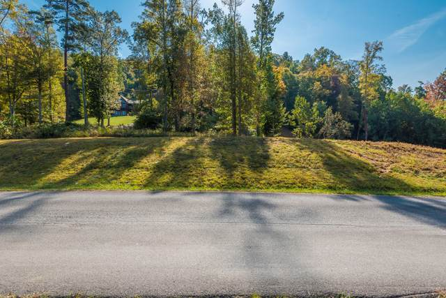 Lot 73 Hickory Pointe Lane, Maynardville, TN 37807 (#1133484) :: Billy Houston Group