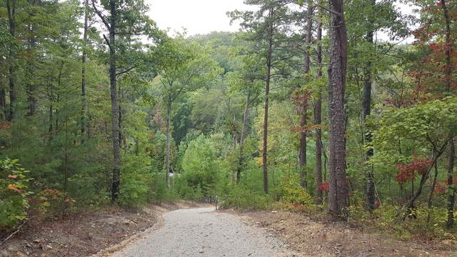 Tract 3 Indian Ridge Drive, Tellico Plains, TN 37385 (#1133565) :: Billy Houston Group