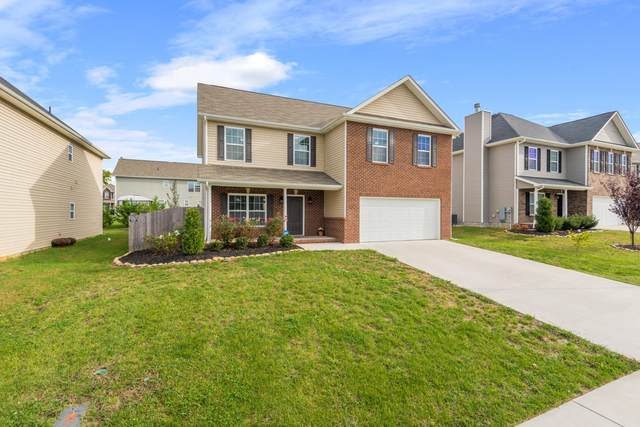 110 Scenic Yard Lane, Maryville, TN 37804 (#1133612) :: Shannon Foster Boline Group