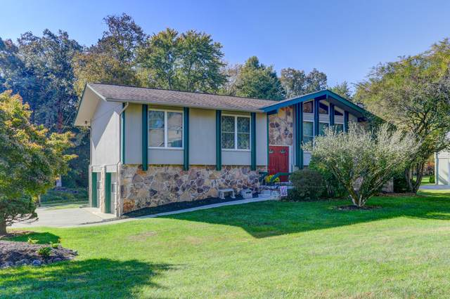 11306 Spring Hollow Drive, Knoxville, TN 37932 (#1133617) :: Catrina Foster Group