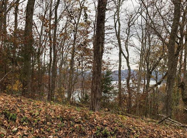 263 Lot Lakeview Drive, Sharps Chapel, TN 37866 (#1133623) :: Catrina Foster Group