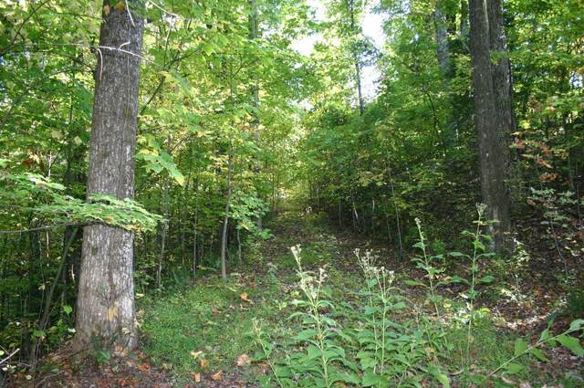 Lot 28 Sonshine Ridge Rd, Cosby, TN 37722 (#1133641) :: Billy Houston Group