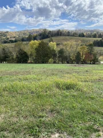 Wild Turkey Lane, Maynardville, TN 37807 (#1133802) :: Catrina Foster Group