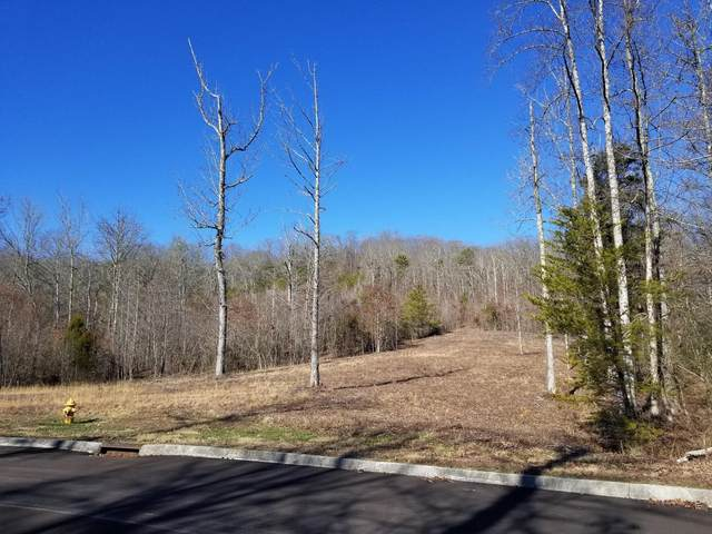 306 Caney View Drive, Harriman, TN 37748 (#1133838) :: Tennessee Elite Realty
