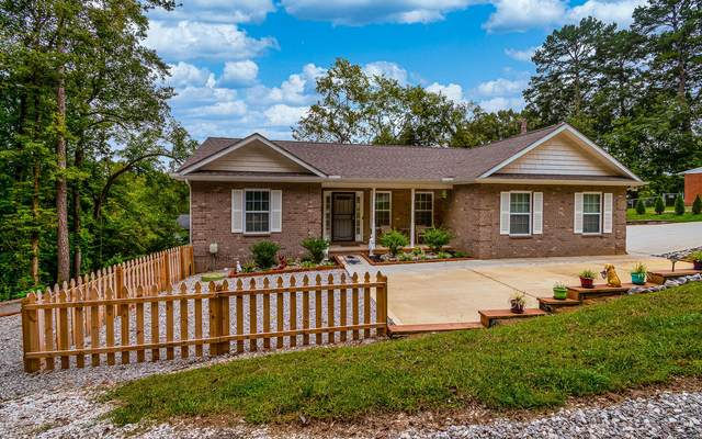 5310 Comanche Drive, Knoxville, TN 37914 (#1133845) :: Billy Houston Group