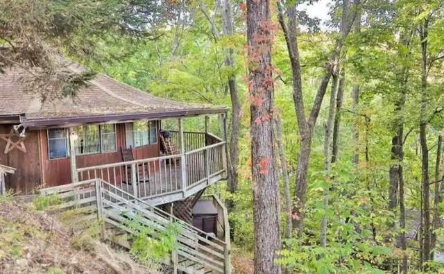 1429 Zurich Drive, Gatlinburg, TN 37738 (#1133905) :: Billy Houston Group