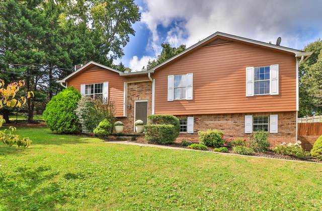 8519 Richland Colony Rd, Knoxville, TN 37923 (#1134028) :: Shannon Foster Boline Group