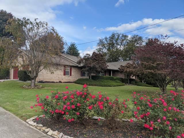6220 Sierra Circle, Rockford, TN 37853 (#1134078) :: Billy Houston Group