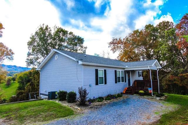 234 Orange Pride Rd, Newport, TN 37821 (#1134133) :: Realty Executives Associates Main Street